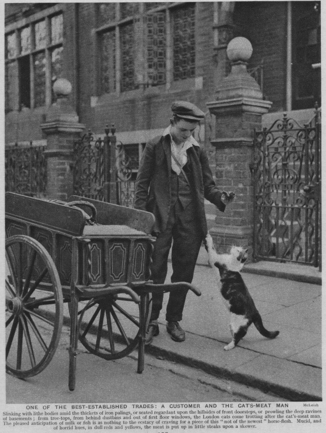 1920s-catsmeat-man
