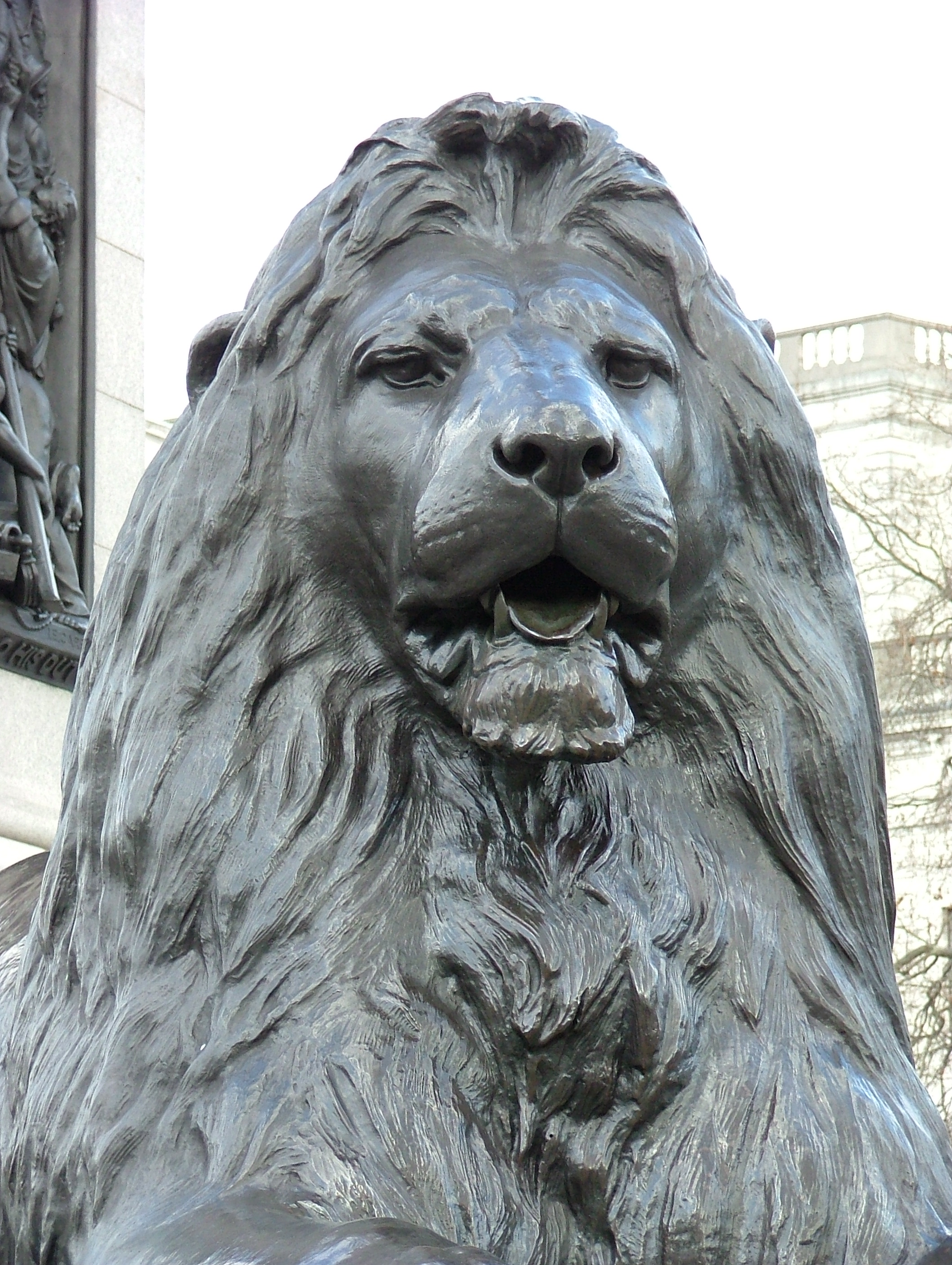 Trafalgar Square Lions Drawing Dscf2801