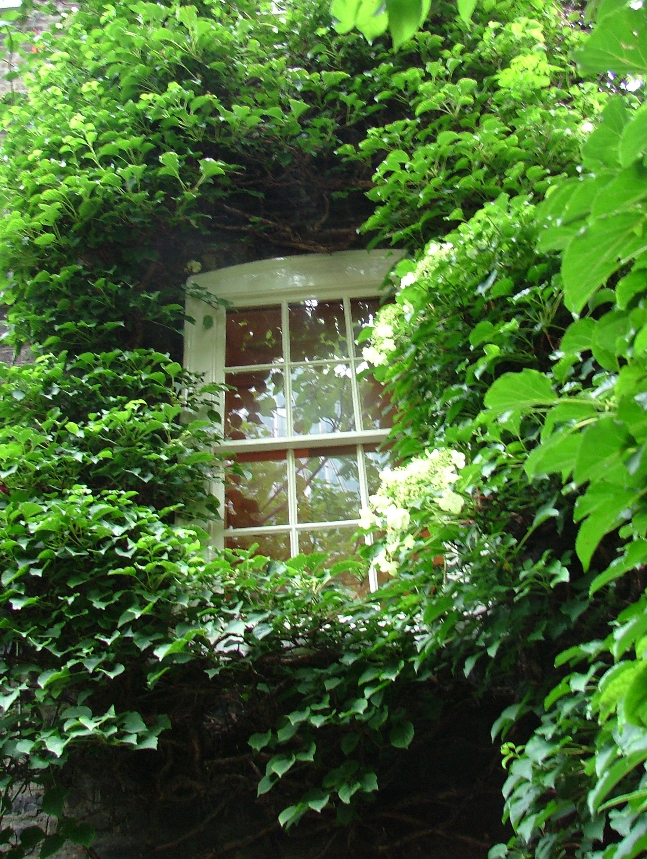 The secret gardens of spitalfields away from the drawing for Georgian townhouse garden design